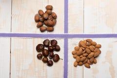 Reeks verschillende soorten noten Stock Foto's