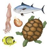 Reeks verschillende soorten van de overzeese van het het karakterwild dierenillustratie de tropische mariene aquatische vissen royalty-vrije illustratie