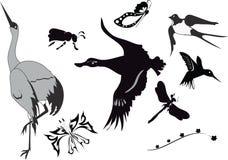 Reeks verschillende vogels stock illustratie