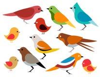 Reeks verschillende vogels Royalty-vrije Stock Afbeelding
