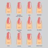 Reeks verschillende vormen van spijkers op grijs De pictogrammen van de spijkervorm Royalty-vrije Stock Afbeeldingen
