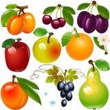 Reeks verschillende vruchten stock fotografie