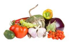 Reeks verse die groenten op witte achtergrond wordt geïsoleerd Stock Fotografie