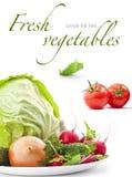Reeks verse groenten Stock Afbeeldingen