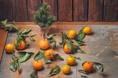 Reeks verse mandarijnen met bladeren op een oude houten achtergrond, groene visgraat met kegels Stock Foto's