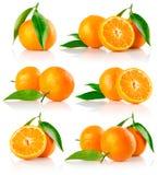 Reeks verse mandarine vruchten met besnoeiing royalty-vrije stock afbeelding