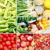Reeks verse organische groenten stock foto's