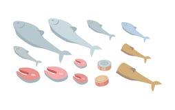 Reeks Verse Vissen Verse Organische Zeevruchtenvector Royalty-vrije Stock Fotografie
