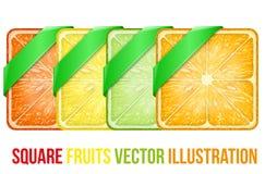 Reeks Vierkante vruchten plakken met Groen lint Royalty-vrije Stock Fotografie