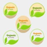 Reeks vijf versie van natuurvoedingemblemen voor Web en mobiel ontwerp Stock Afbeelding