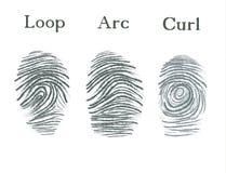 Reeks vingerafdrukkenpictogrammen, identiteitskaart-de vingerafdruk van de veiligheidsidentiteit Lijn, boog, krul Stock Foto's