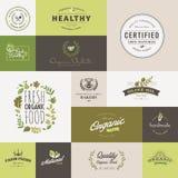 Reeks vlakke ontwerppictogrammen voor natuurvoeding en drank royalty-vrije illustratie