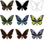 Reeks vlinders Silhouet, overzicht en geschilderd Stock Foto's