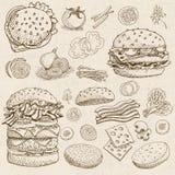 Reeks voedsel en kruiden Stock Afbeeldingen