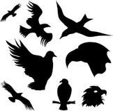 Reeks vogels`silhouetten Royalty-vrije Stock Afbeelding