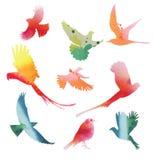 Reeks vogels tijdens de vlucht Waterverfsilhouetten Royalty-vrije Stock Afbeelding