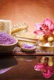Reeks voor aromateraphy Royalty-vrije Stock Foto