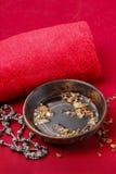 Reeks voorwerpen voor hands spa behandeling Stock Foto