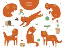 Reeks vriendelijke die funky gemberkatten, op wit, modieuze pret wordt geïsoleerd, Vectorillustratie met kattentoebehoren - voeds Stock Afbeeldingen