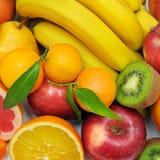 Reeks vruchten Stock Afbeelding