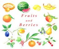 Reeks vruchten en bessen Royalty-vrije Stock Afbeeldingen