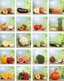 Reeks vruchten en groenten Royalty-vrije Stock Afbeelding