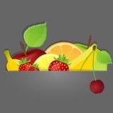 Reeks vruchten. Vector illustratie. Royalty-vrije Stock Fotografie