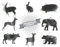 Reeks waterverfdieren vector illustratie