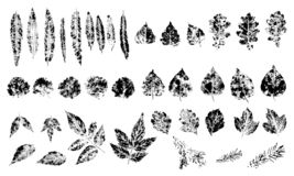 Reeks zegel verschillende bladeren stock illustratie