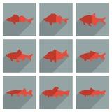 Reeks zoetwatervissen met schaduw vlak concept Royalty-vrije Stock Afbeeldingen