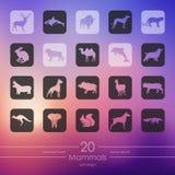 Reeks zoogdierenpictogrammen vector illustratie