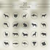 Reeks zoogdierenpictogrammen royalty-vrije illustratie
