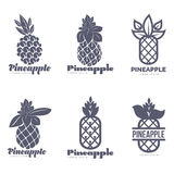 Reeks zwart-witte grafische malplaatjes van het ananasembleem vector illustratie