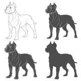 Reeks zwart-witte illustraties met een hond van de kuilstier Geïsoleerde vectorvoorwerpen royalty-vrije illustratie