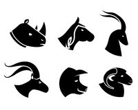 Reeks zwarte dierlijke hoofdpictogrammen Royalty-vrije Stock Afbeeldingen