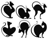Reeks zwarte katten Royalty-vrije Stock Afbeeldingen