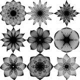 Reeks zwarte vlakke modieuze vector grafische zwarte kantbloemen voor royalty-vrije stock afbeeldingen