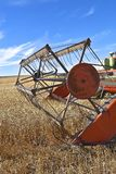 Reel and canvas of combine ending wheat into a combine. The reel of an old combine is in the process of harvesting wheat stock image