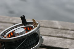 The Reel with May fly. Fly Reel with May fly Royalty Free Stock Images
