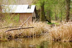 Reelfoot Lake Cabins. Old cabins sit besidethe water at Reelfoot Lake State Park royalty free stock photos