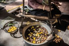 Reeling silk from cocoons stock photography