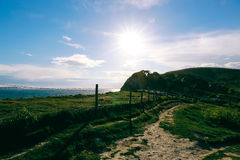 Reen-Felder und Küsten- Weg nahe West-Lulworth, Dorset lizenzfreie stockbilder