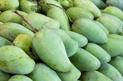 Reen mangoes in the fresh market Stock Image