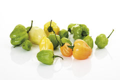 Reen and yellow habanero Peppers Royalty Free Stock Photo