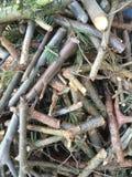 reepjes van hout Royalty-vrije Stock Fotografie