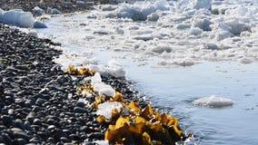 Reepjes van ijs in de golven stock footage