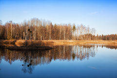 Rees are reflected in water Stock Photos