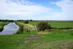 Reeuwijkse Plassen natury teren holandie Fotografia Stock