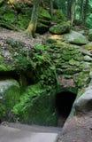 Refúgio da floresta fotografia de stock royalty free
