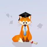 Ref fox graduate Royalty Free Stock Photography